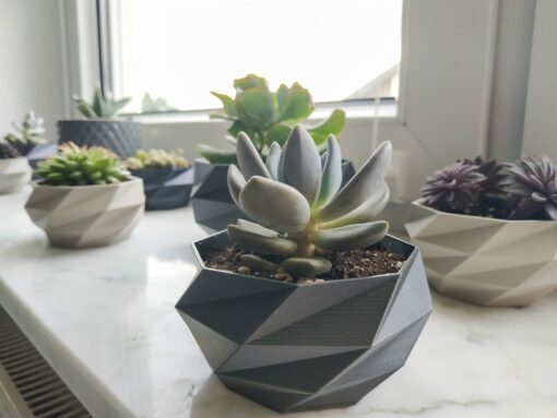 Schnittenliebe 3D Druck Sukkulententöpfe beton grau metallic